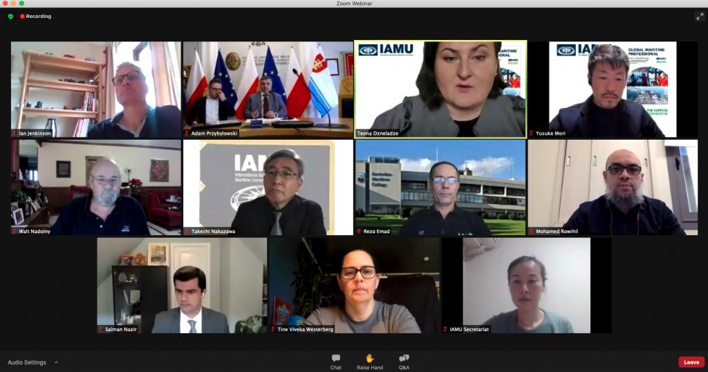 IMAU webinar participants